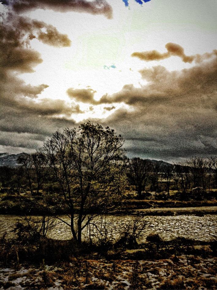 信濃川の雪